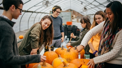 Students carve pumpkins.
